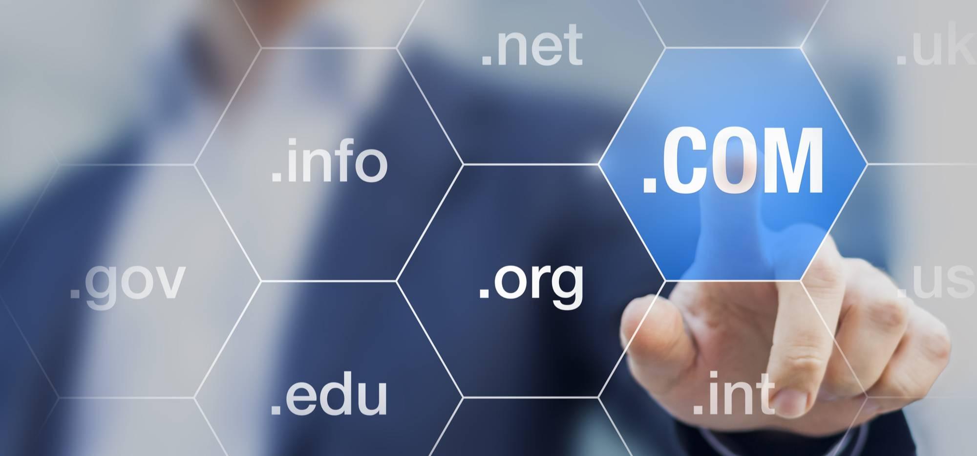 Stage Two - Domain Name Registration & Website Hosting Setup